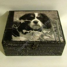 'Loyal and True' Memory Box.
